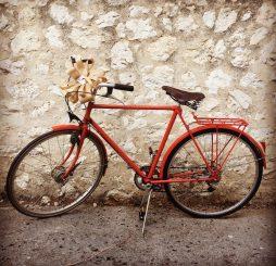 Relooking vélo vintage